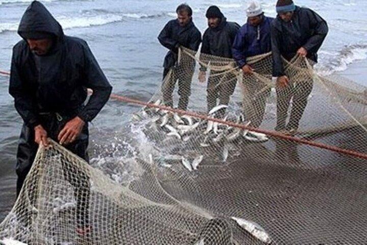 ۴ میلیون قطعه بچه ماهی در رودخانه های مازندران رهاسازی می شود