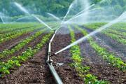 سیستم «آبیاری نوین» راهی برای نجات کویر قم از چتر خشکسالی