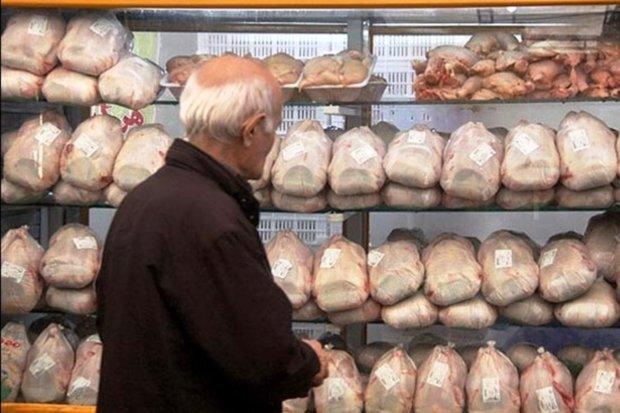 ۲۰۰ تن گوشت مرغ منجمد تنظیم بازار در خراسان جنوبی توزیع می شود