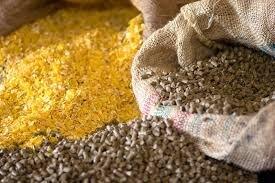 ۲۵ هزار تن خوراک آبزیان در چهارمحال و بختیاری تولید شد