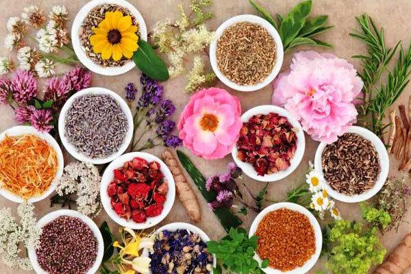 انواع گیاهان دارویی و تاثیرگذاری آنها