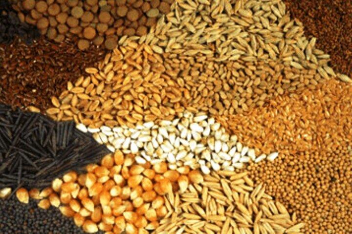 قیمت انواع نهاده های دامی و محصولات کشاورزی در ۲۶ شهریور ۱۳۹۹