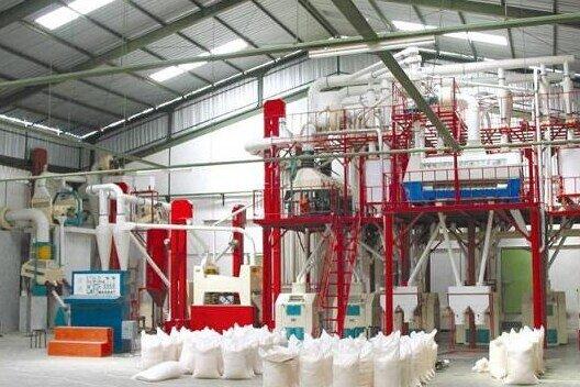 ۵ واحد کارخانه تولیدی آرد در ایلام فعال است