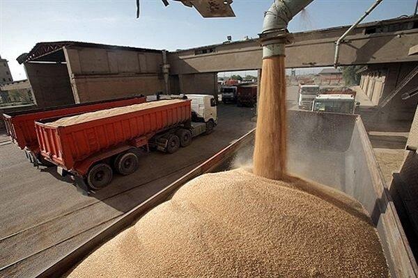انبارهای نگهداری گندم در خراسان شمالی شناسنامهدار شوند