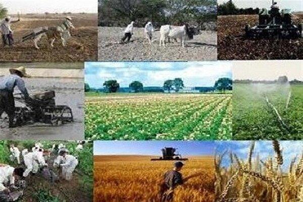 ۴۴۴ میلیارد تومان تسهیلات اشتغالزای روستایی در گلستان پرداخت شد