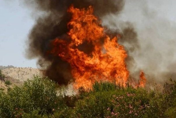 ۴کانون بحرانی در منابع طبیعی استان مرکزی وجود دارد؛ نابودی ۲۸۰۰ هکتار مرتع در آتش