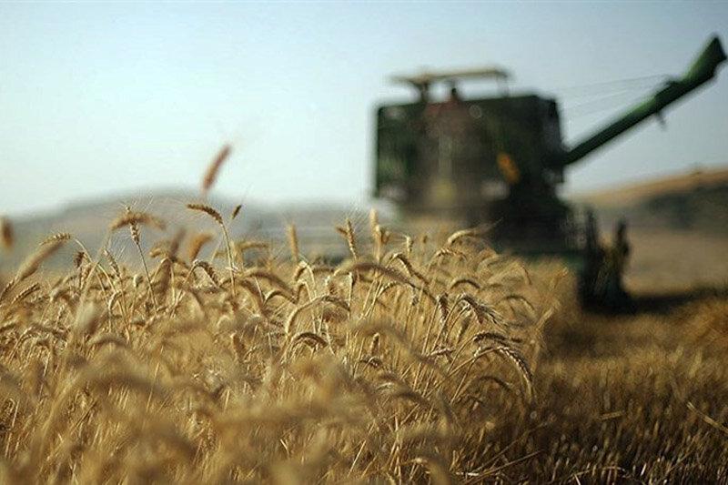 کشاورزانی که در شرایط سخت «رنج» میکارند؛ ادوات گران بلای جان کشاورزان