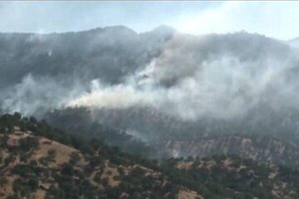 ۳۵۱ هکتار از مراتع زنجان دچار آتشسوزی شد