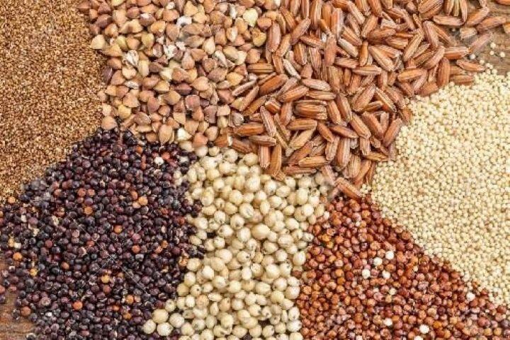 یک واحد متخلف خوراک دام در آمل ۷۱۲ میلیون ریال جریمه شد