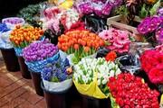 ۴۰ درصد صادرات گل کشور در اختیار خراسان رضوی است