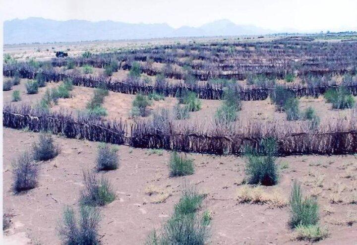 اختصاص اعتبار ۴۰ میلیون تومانی برای بیابان زدایی در قاین