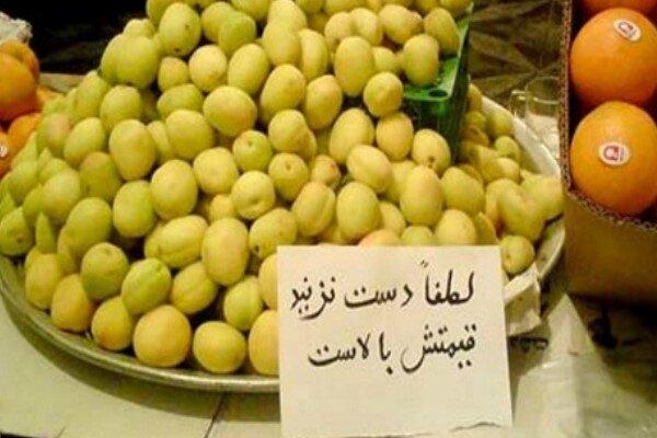 افزایش قیمت میوه و تره بار در شیراز تخلف است/ الزام در ارائه فاکتور