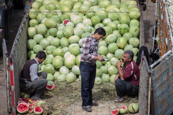 حضور فعال دلالان میوه در میادین میوه و ترهبار!