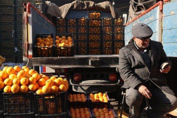 فروشندگان میوه گران فروش نیستند