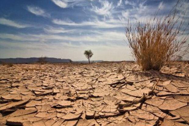 تأثیرات خشکسالی بر اقتصاد استان سمنان؛ بیکاری مولود زشت بی آبی