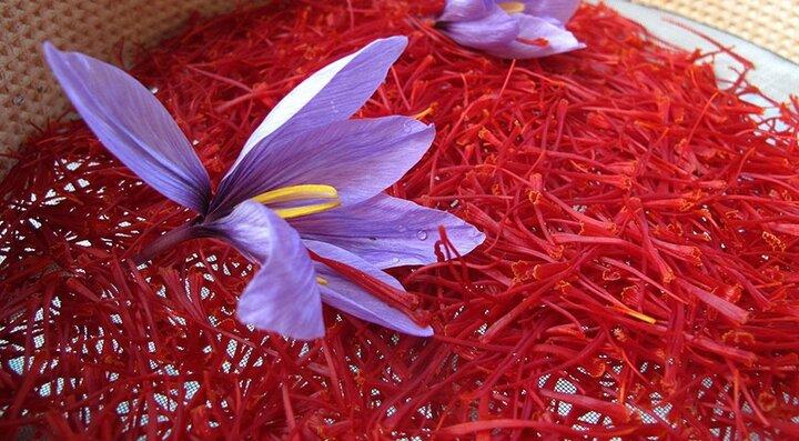 بررسی راهکارهای توسعه صادرات زعفران