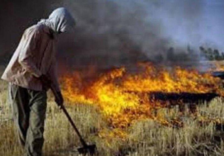 آتش در کمین جنگل ها و مراتع استان همدان