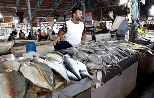 جزئیات طرح خرید توافقی ماهی