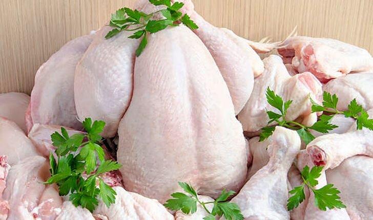 افزایش قیمت مرغ ناشی از افزایش قیمت مولفههای تولید است