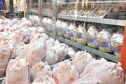 ۱۱۰ تن مرغ منجمد در کهگیلویه و بویراحمد توزیع میشود