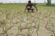 چهارمحال و بختیاری تشنه لب است؛ اشتغال بخش کشاورزی در یک قدمی تعطیلی