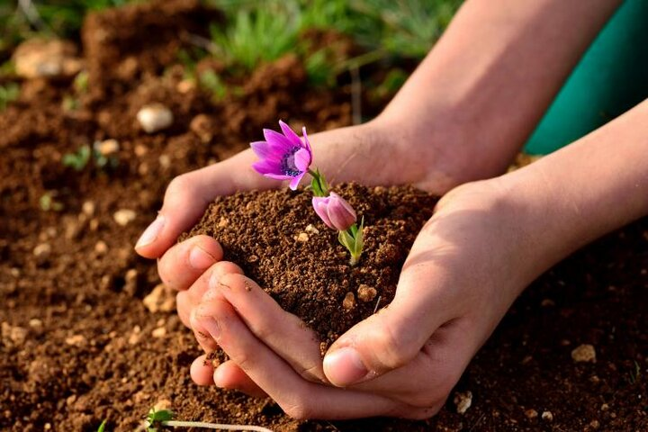 جایگزینی برای خاک نداریم/ امید به زندگی با احیای قنات و اقدامات آبخیزداری