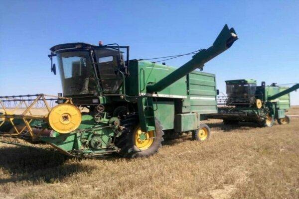 ۱۳۱ هزار تن گندم در خراسان شمالی خریداری شد