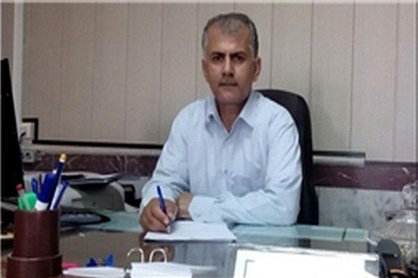 دومین مرحله بهای کلزای خریداری شده در کردستان پرداخت شد