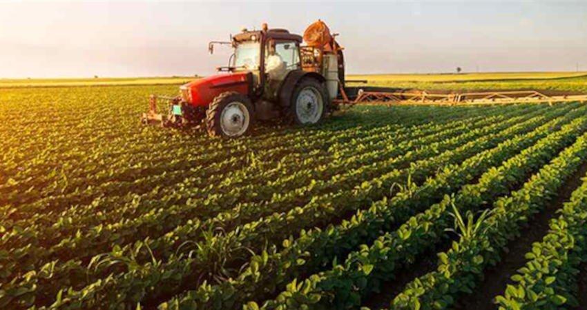 نوش داروگردشگری کشاورزی  بعد از محو گردشگران!