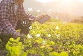 کشاورزی دیجیتال، نقطه امید برای تامین غذای آینده/ کاهش ۵۰ درصدی مهاجرت به شهرها