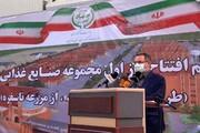 هدفگذاری افزایش ۳۰۰ هزار تنی برداشت سالانه محصولات کشاورزی در تهران