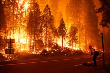 آتش سوزی های گسترده در کالیفرنیا