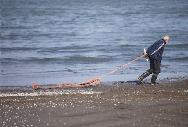 قاچاقچیان به آبزیان هم رحم نکردند؛ ساحل نشینان خلیج فارس در آرزوی ماهی ارزان