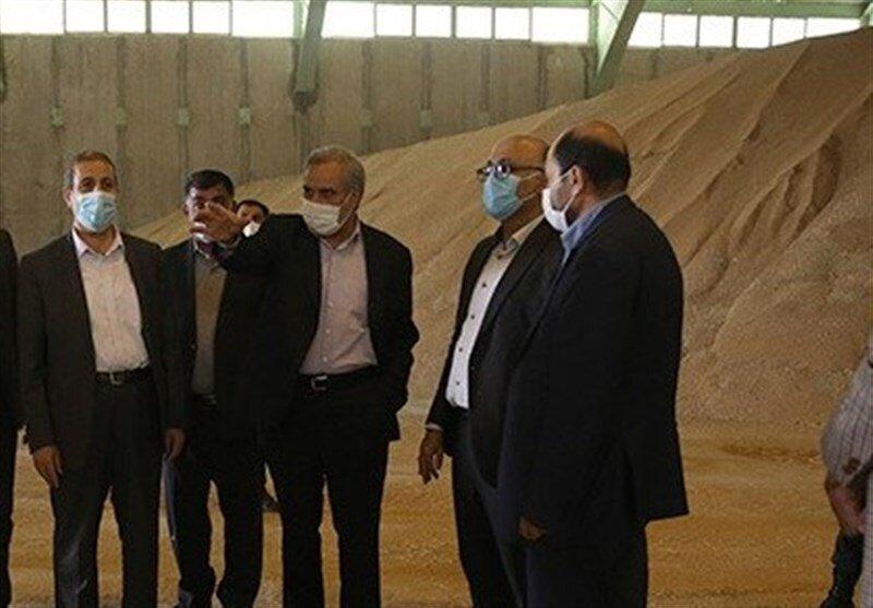 خرید گندم تضمینی از کشاورزان تا آخر مهر ماه ادامه دارد