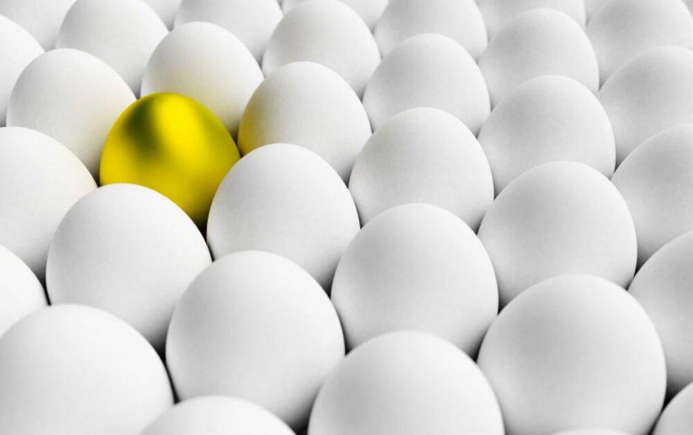 عرضه تخم مرغ با نرخ مصوب به تعویق افتاد